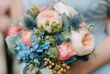 Flowers I love♥