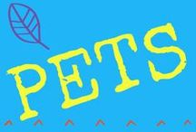PETS / CHECK OUT ALL OF OUR BLOGS at http://www.lasvegashomeslv.com/
