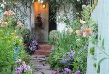 Сад. Дача (Garden) / Садоводство, зелень, дизайн дачи