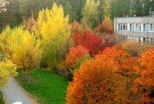 Природа. Родные края (Nature. Homelands) / Фото природы Южного Урала. Те места, где я живу, дышу, хожу))