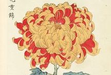 japanese block prints