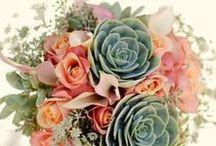 Ah, Floresceu! <3 / Aprende que não importa em quantos pedaços seu coração foi partido, o mundo não pára para que você o conserte. Aprende que o tempo não é algo que possa voltar. Portanto, plante seu jardim e decorre sua alma, em vez de esperar que alguém lhe traga flores.