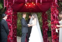 Wild Weddings / by Laura