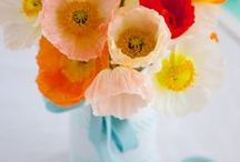 Flowers - bunches, pots, arrangements, bouquets and so on