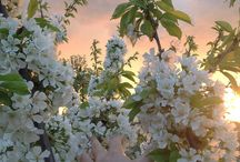 Spring goals❤️