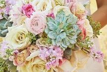| FLOWERS | / Create the perfect design accents on your wedding day with elegant, beautiful floral arrangements and bouquets.  Gather inspiration for bouquet arrangement, flower placement, flower types and complimentary colors for your wedding day.