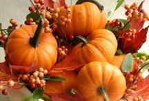 The pumpkin!