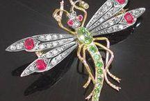ważki dragonflies