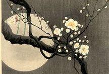 Arts Japon & Asie / by Chantal Tardif