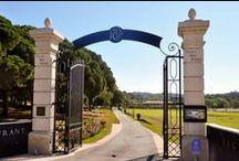 Le Domaine / Venez découvrir le Domaine viticole du Clos des Roses:  Niché au pied du Massif de l'Esterel, bénéficie d'un sol d'origine volcanique et d'une influence maritime qui permet d'en faire un vignoble de qualité.