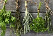 garden  herb drying / wieszaczki do suszenia  ziół  ozdobne  praktyczne, oraz  będę  tu zamieszczać ładne sposoby pakowania  ziół