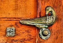 home - birdy