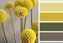 Colors: Yellow / Paleta de colores en amarillo, detalles, muebles y espacios en los que el amarillo aporta la nota de color.