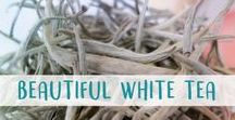 Beautiful White Tea / White teas are a delicate specialty -- find everything you could ever want about this beautiful unoxidised tea type.