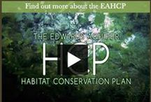 EAHCP / The Edwards Aquifer Habitat Conservation Plan (EAHCP) is intended to provide assurance that suitable habitat for covered species will remain in both the San Marcos and Comal Springs, despite lawful water use activities within the Edwards Aquifer region.  The U.S. Fish & Wildlife Service (USFWS) has  designated eight species that live in the Edwards  Aquifer, the San Marcos Springs, and the Comal  Springs aquatic ecosystems as either threatened  or endangered.