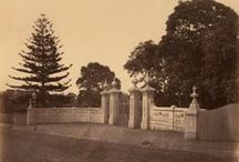 Royal Botanic Gardens, Sydney / The Gardens, which opened in 1816, have been a favourite leisure ground for Sydneysiders and tourists for almost two centuries. These photographs from the collections of the State Library of NSW celebrate the natural beauty of the gardens from the late 19th century.