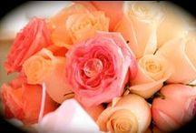 Bouquet de la mariée…