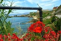 Греция / Солнце, море, пляж, вино, еда, тусовки, архитектура и искусство, история и очень много веры!