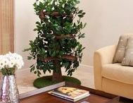 ✿ Cat Tree Furniture With Leaves ✿ / Cool collection of cat tree furniture with leaves for folks who want a realistic cat tree or a cat tree that looks like a real tree.