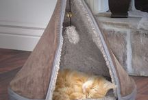 """✿ Cat Teepee Bed Playhouse Ideas ✿ / Cat teepee bed playhouse eye candy, ideas and """"how to's"""". These are great for hedgehogs, pet rats and guinea pigs too!"""