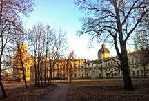 Гатчина и Гатчинский район / Невероятной красоты Дворец и Парк, умопомрачительные леса вокруг!
