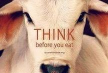 ✿ Vegan Lifestyle ✿ / Vegan lifestyle information and stuff.