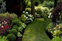 Staging Outside & Gardens / Staging Outside is so important, fun, and lovely.  Take what is inside outside, it usually works.  Make outdoor rooms.  They bring peace, charm, beauty  and love to any home. / by Barb Schwarz, Stagedhomes.com IAHSP