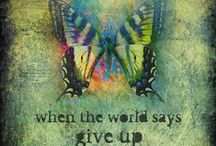 Do not give up/persevere