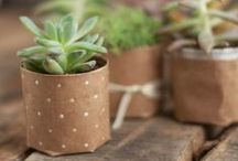 Planters / by Katelyn - learningcreatingliving.com