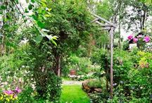 Puutarhat - Gardens / Beautiful gardens in Finland and abroad.