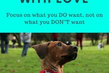 Dogs / Life with dogs - you'll only find force-free training methods and suggestions here. Dogs, dog breeds, dog characters, dog training | books, free guides, free downloads | #dogtraining, #dogbehavior | www.brilliantfamilydog.com
