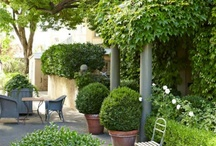 Backyards & Roofgardens
