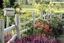 Country & Cottage Gardens