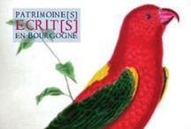 Les drôles d'oiseaux de 2012 / Histoire naturelle des oiseaux, par Buffon. Bibliothèque municipale de Dijon. Cote 12945. (Conception graphique et photographie : Anne Gautherot)