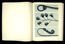 """Urformen der Kunst / """"Les formes originelles de l'art"""" ou """"Urformen der Kunst"""" de Karl Blossfeldt, 1929.  Karl Blossfeldt, artisan et historien d'art, réalise à partir de 1900 des milliers d'agrandissements photographiques d'éléments végétaux, pour déceler le lien entre la structure des plantes et la forme artistique.  Cet ouvrage appartient au Musée Nicéphore Niépce. > http://www.museeniepce.com/"""