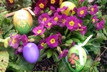 Gourmetkaters Ostern / Alles, was unser Gourmetkater toll zu Ostern findet...  #ostern #easter