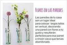Tips e ideas
