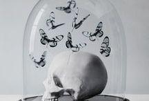 f: the corpse bride