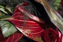 Snijanthurium / De snijanthurium is een mooie, elegante en kleurrijke bloem die ontzettend veel te bieden heeft.