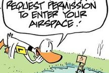 Air Traffic Control Humour / Ding Duck and his Flight Instructor have a humorous way of interacting with Air Traffic Control. For more cartoons and laughs visit: www.swamp.com.au