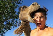 Funny / Really funny photos that are amazing to look at!!!  / by Teresa Ehrich
