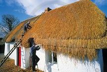 THATCHED BLISS.