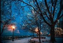 ☃ Winterwonderland ☃