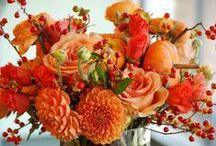 ❁✿✺ Bouquets ❁✿✺