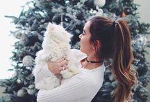 Fotos de Natal Tumblr ✨