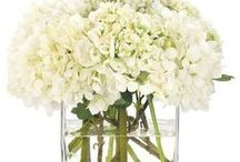 Floral Cube Designs / Floral cubes make nice wedding centerpieces and can be used in so many ways!