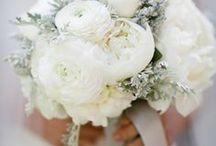 Winter Wedding / Let It Snow!!