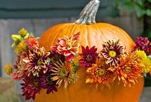 Happy Thanksgiving! / From flowers and centerpieces to recipes and craft projects, these pins are meant to inspire you this holiday season!