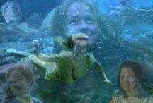 90stalgia: Ocean Girl / An Australian show by Jonathan M. Shiff Productions; it aired on the Disney Channel in the U.S. from 1994-'97, and I've been obsessed with it ever since.