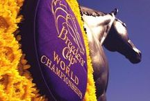 Best of Breeders' Cup 2015 / As the luxury gift provider for the Breeders' Cup World Championships, we are excited to bring you the best and brightest for this unforgettable event!